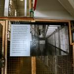 Galerie : photo 17