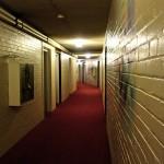 Galerie : photo 54